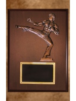 na-10_karate-plaque