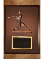 na-16_male-baseball-plaque